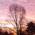 Urban sunset by wannabewriter81