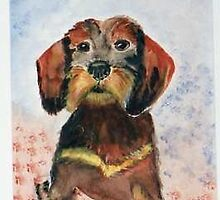 Wirehaired Dachshund by Heidi Mooney-Hill