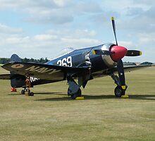 Hawker Sea Fury FB 11 by Matt Eagles