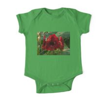 Vivid Scarlet Amaryllis Flowers - Happy Holidays! One Piece - Short Sleeve