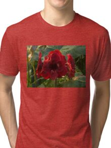 Vivid Scarlet Amaryllis Flowers - Happy Holidays! Tri-blend T-Shirt