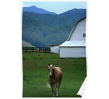 Valle Crucis Countryside Poster