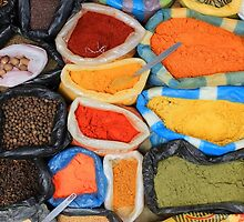 Colorful Spices at the Market by rhamm