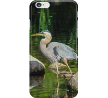Blue Heron Reflections iPhone Case/Skin
