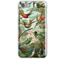 Hummingbirds iPhone Case/Skin