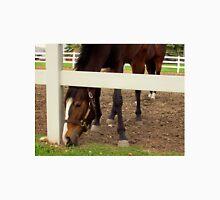 SEVEN LEGGED HORSE Unisex T-Shirt