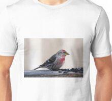MALE COMMON REDPOLL Unisex T-Shirt