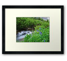 Sneffels Creek Framed Print