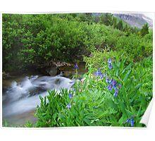 Sneffels Creek Poster