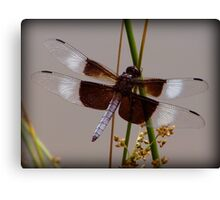 Sweet Signs of Summer Canvas Print
