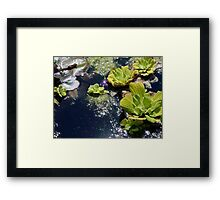 A PASSIONATE MOMENT Framed Print