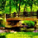 The Little Stone Bridge by Lois  Bryan