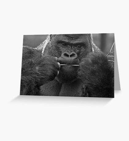 not sure this will fill me up ............. Greeting Card