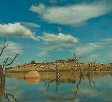 Frying Pan Arm Lake Eucumbene Australia by David Woolcock