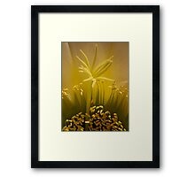 Cactus super macro (2) Framed Print