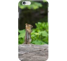 Chipmunk In South Lake Tahoe  iPhone Case/Skin