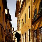 Italian Reverie by Kathryn Steel