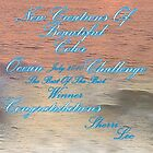 NEW CREATIONS  ...OCEAN CHALLENGE by Sherri     Nicholas