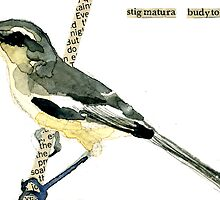 Greater Wagtail Tyrant by Carol Kroll