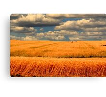 Bread Basket of the World Canvas Print