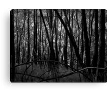 Scary Trees- Giles Conservation Park Canvas Print