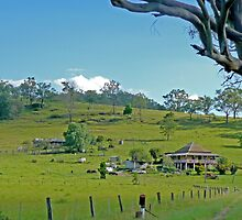 farm house, Wallaby Creek, Queensland by Margaret  Hyde