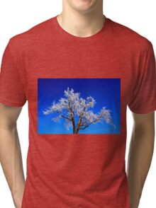 A Touch of Frost Tri-blend T-Shirt