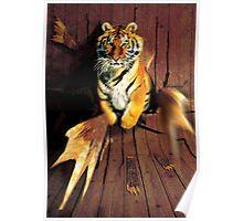 Tiger Wreckage Poster