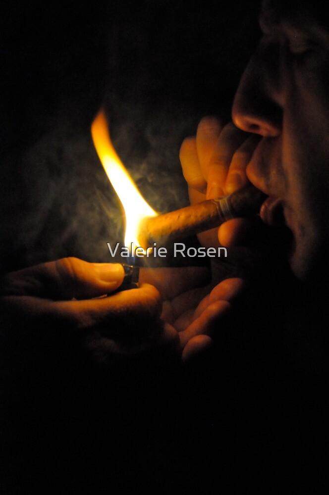 Cuban Fire by Valerie Rosen