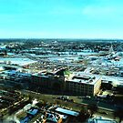 Winnipeg from Above in the Winter by Larry Trupp