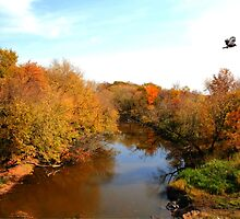 Autumnal View by Larry Trupp
