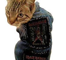 Iron Maiden Cat by MrBrightsidee