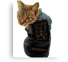 Iron Maiden Cat Canvas Print