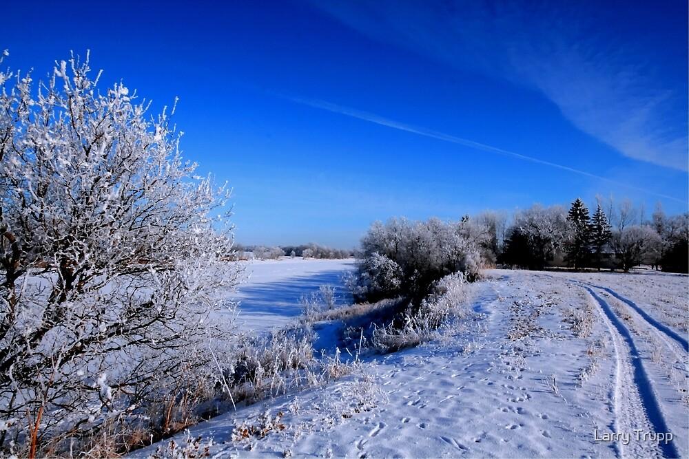 Frosty Morning by Larry Trupp