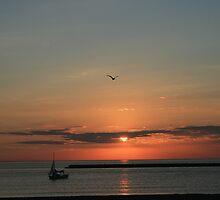 Lake Michigan Sunrise by kkphoto1