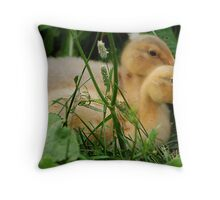 REDREAMING SAXONY Throw Pillow