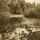 The Hidden River by Rhonda Blais
