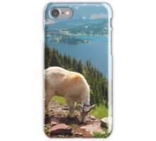 At the Top of the World iPhone Case/Skin
