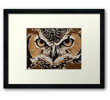 Eyes of an owl Framed Print