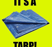 It's a Tarp! by tcjacquet