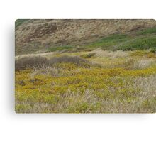 Cabrillo National Park, California Canvas Print