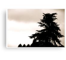 Tree CMXVII Canvas Print