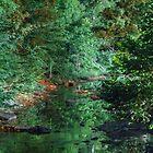Midnight Creek by DevereauxPrints