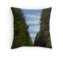 Lined With Trees Throw Pillow