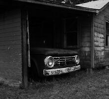 Forgotten Friend 4 by Timothy Meissen
