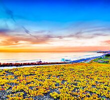 PCH Sunset by Jaysun McMillin