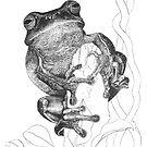 Dainty Green Tree Frog by Laura Grogan