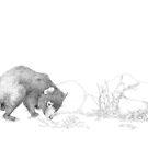 Tasmanian Devil by Laura Grogan