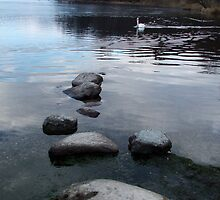 Windermere - Lake District, NW England by ArtsGirl2