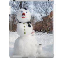 Snowbound Red Sox Fans iPad Case/Skin